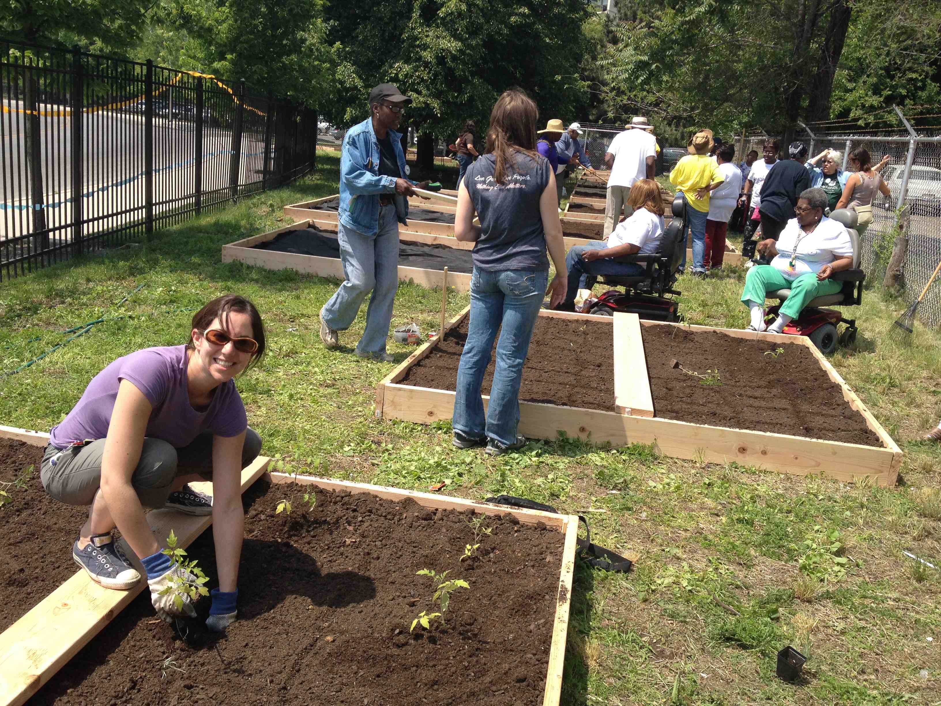 Building Community Through a Garden The Chicago Bridge